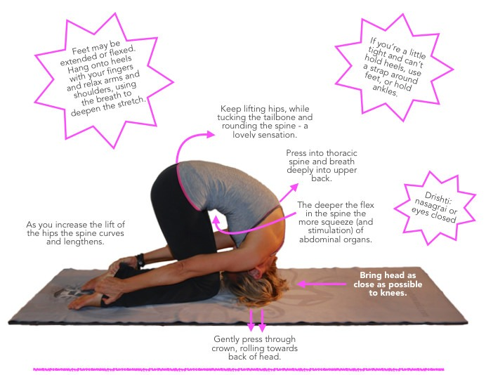 How to do Sasakasana