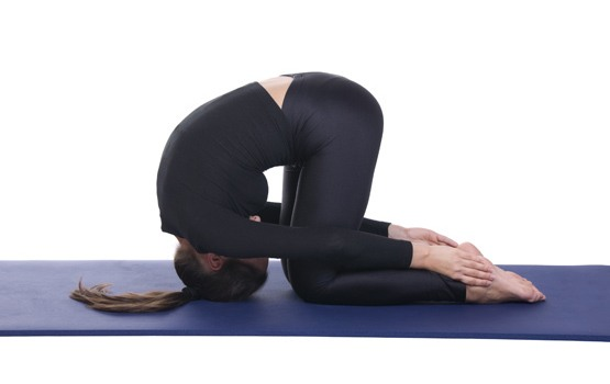 Rabbit pose Sasakasana