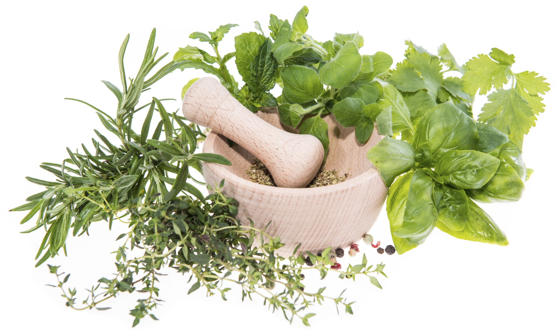 5 empowering herbs in ayurveda science ayurveda and yoga